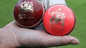 Diferentes tipos de bola no críquete